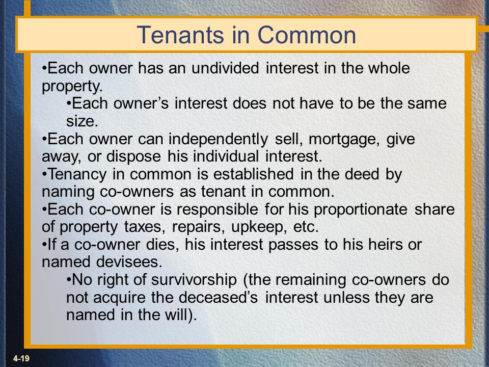 Tenants in Common Each owner has an undivided interest in the whole property. Each owner's interest does not have to be the same size.