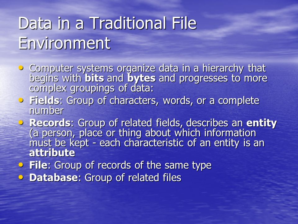 Data in a Traditional File Environment