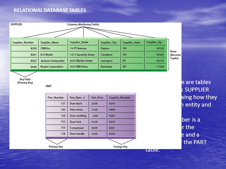 RELATIONAL DATABASE TABLES