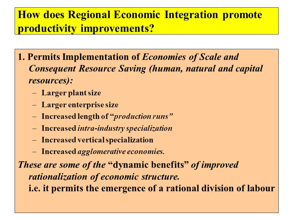 How does Regional Economic Integration promote productivity improvements