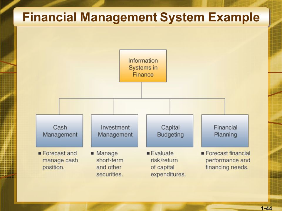 Financial Management System Example
