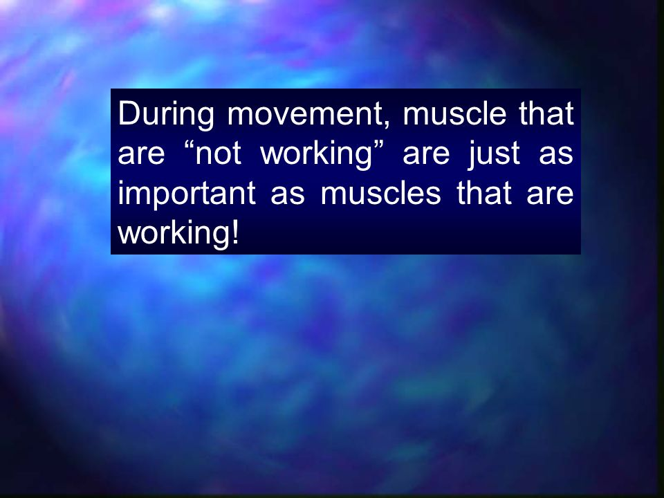 During movement, muscle that are not working are just as important as muscles that are working!