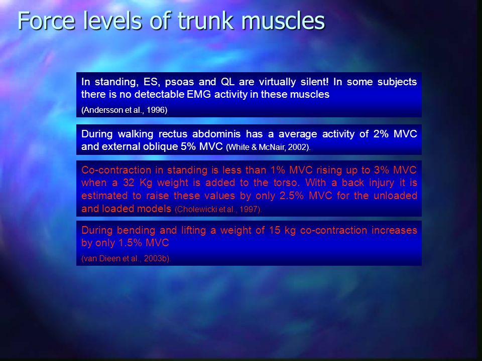 Force levels of trunk muscles
