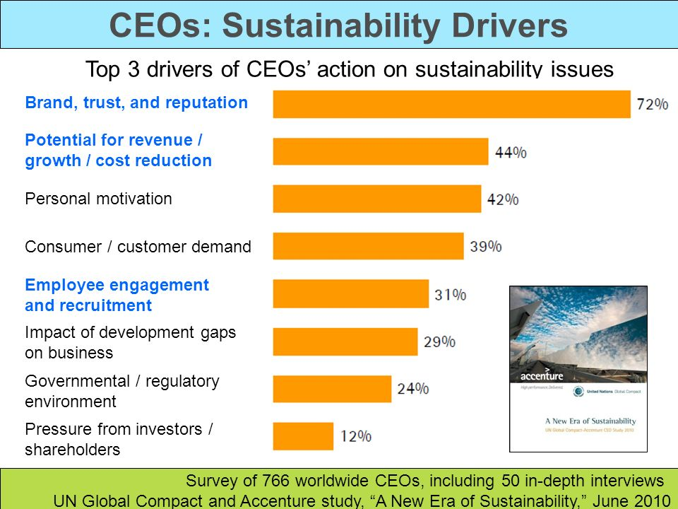 CEOs: Sustainability Drivers