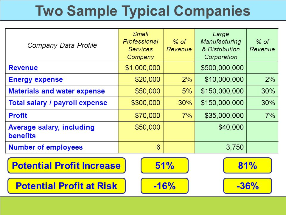 Two Sample Typical Companies