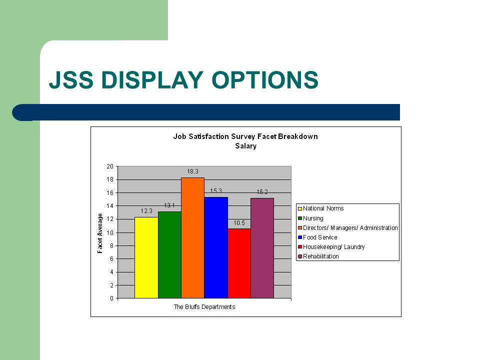 JSS DISPLAY OPTIONS