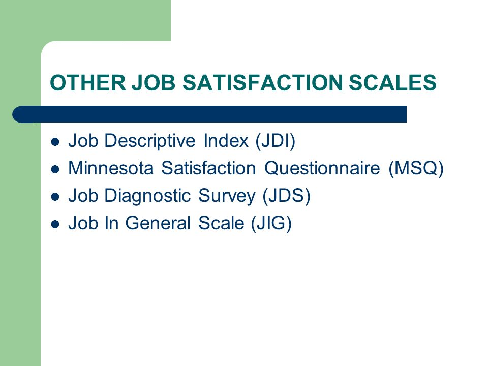 OTHER JOB SATISFACTION SCALES