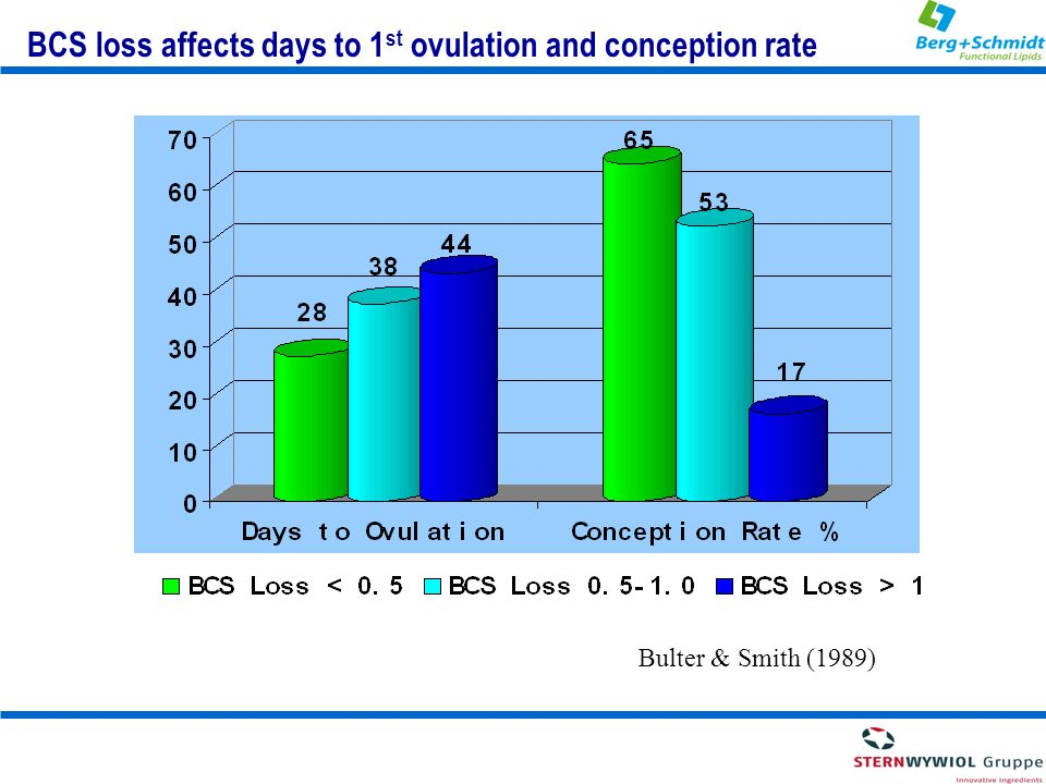 BCS loss affects days to 1st ovulation and conception rate