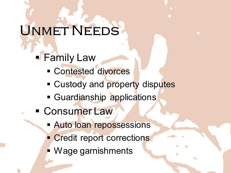 Unmet Needs Family Law Consumer Law Contested divorces