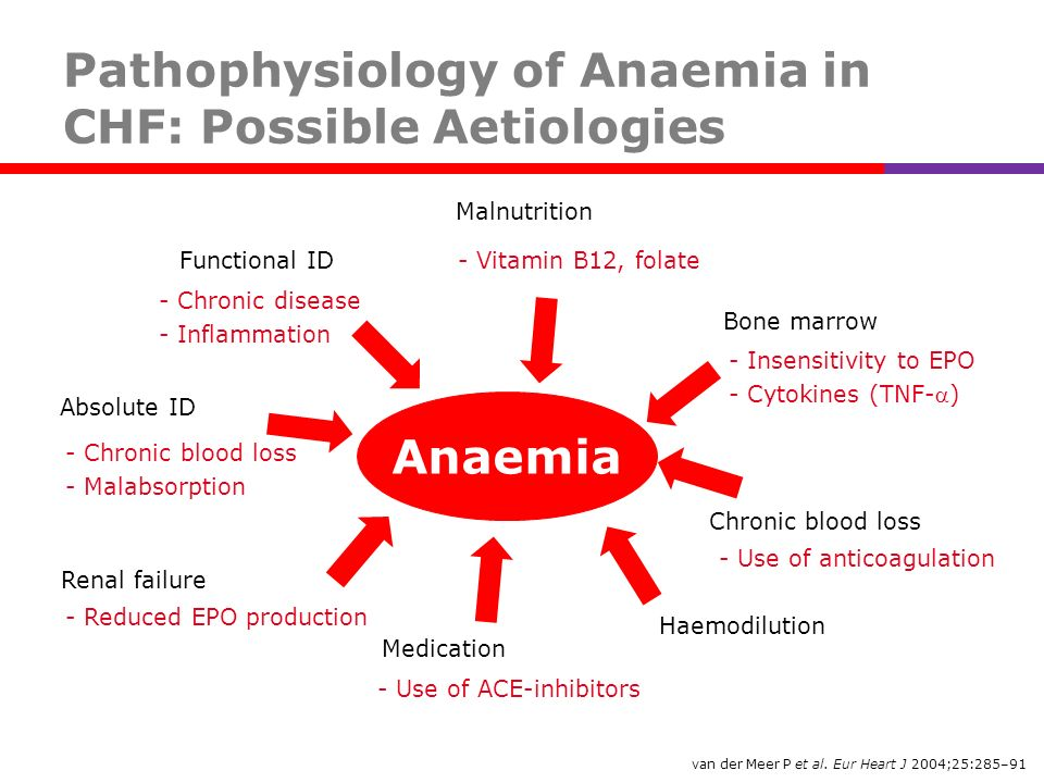 Pathophysiology of Anaemia in CHF: Possible Aetiologies