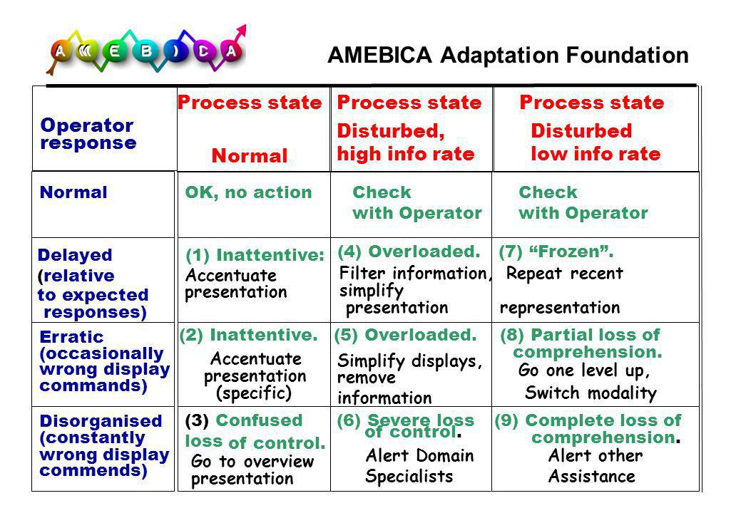 AMEBICA Adaptation Foundation