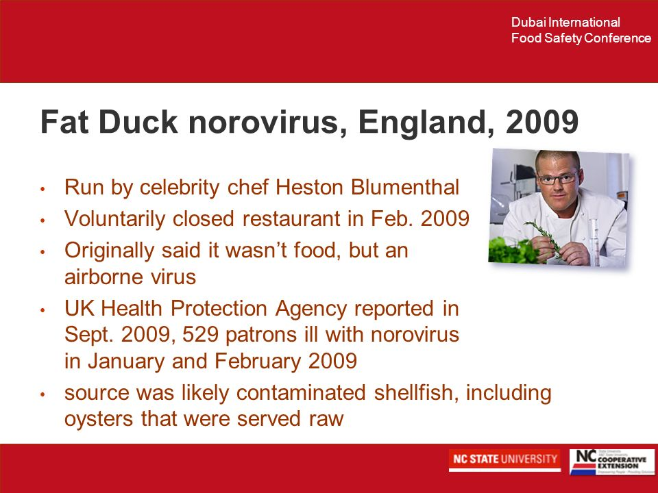Fat Duck norovirus, England, 2009