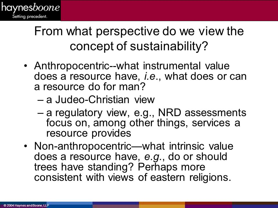 From what perspective do we view the concept of sustainability