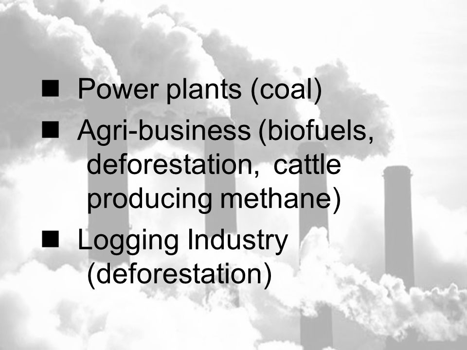 Power plants (coal) Agri-business (biofuels, deforestation, cattle producing methane) Logging Industry (deforestation)