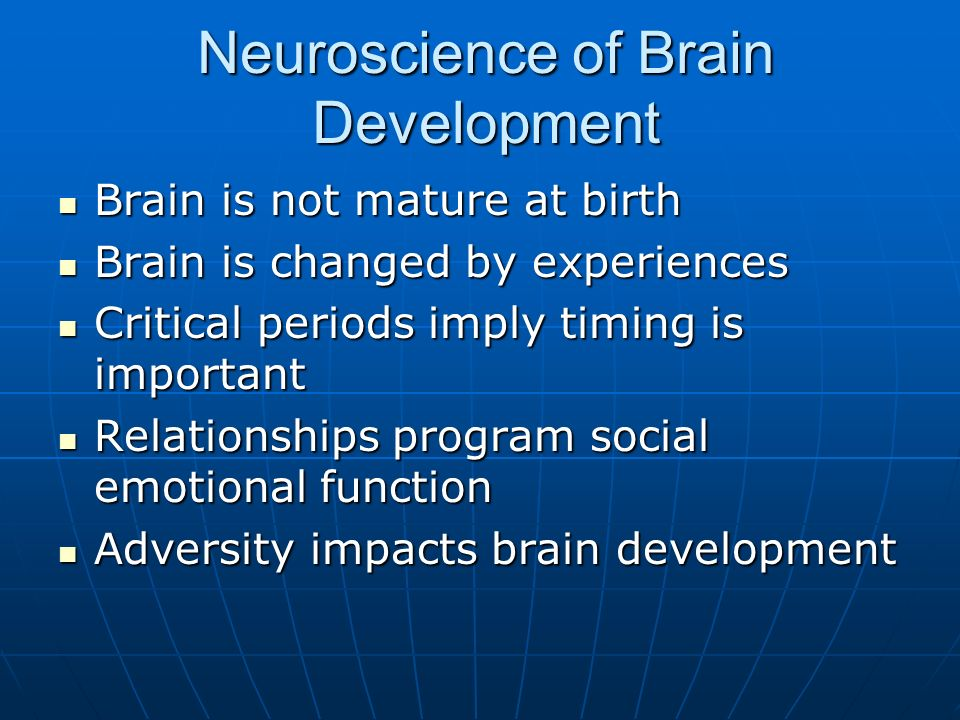 Neuroscience of Brain Development