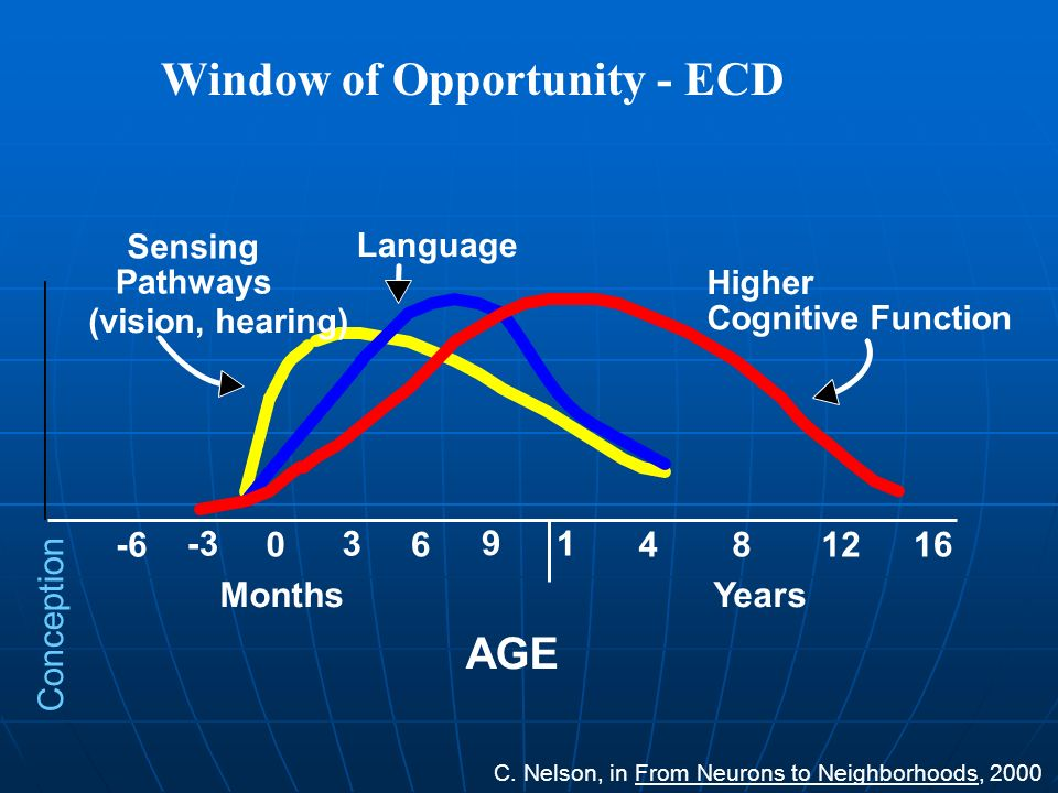 Window of Opportunity - ECD