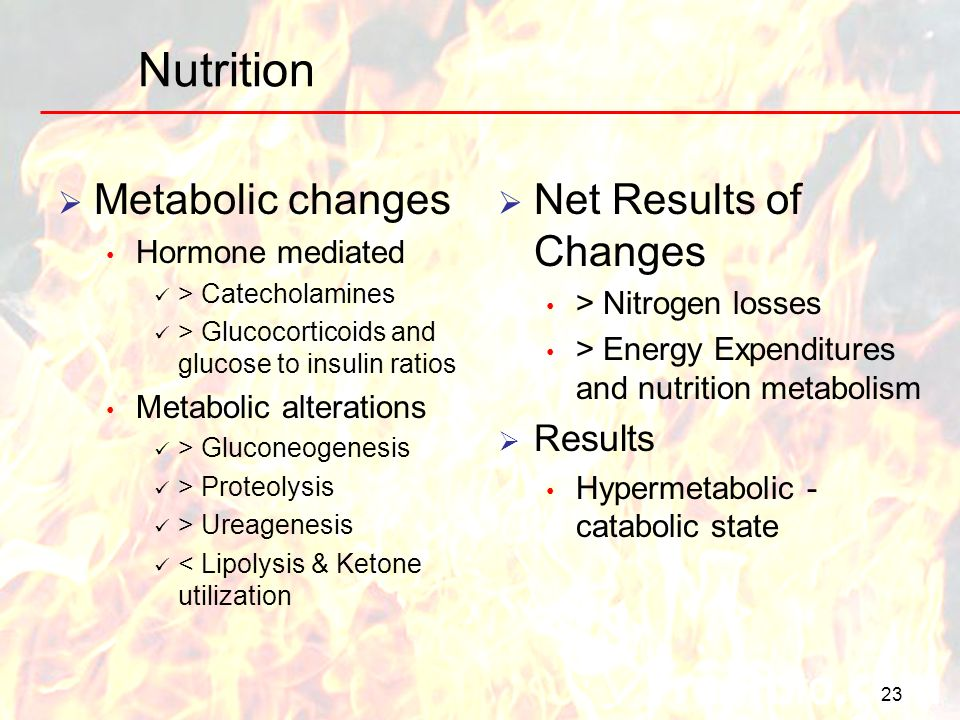 Nutrition Metabolic changes Net Results of Changes Results