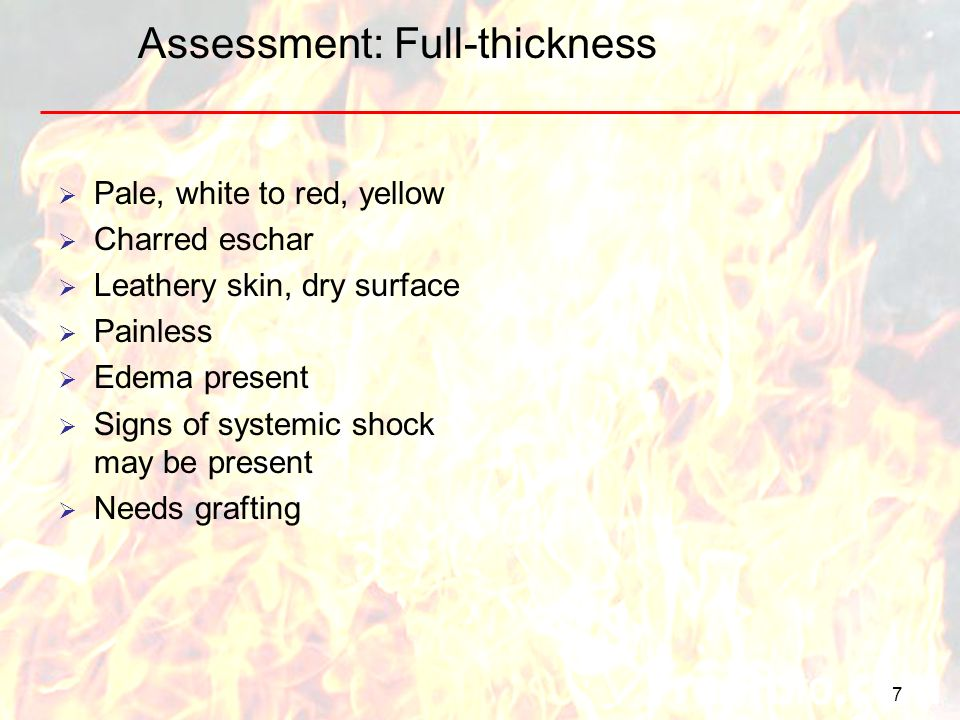 Assessment: Full-thickness