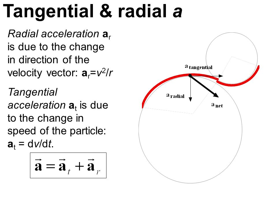 Tangential & radial a Radial acceleration ar is due to the change in direction of the velocity vector: ar=v2/r.