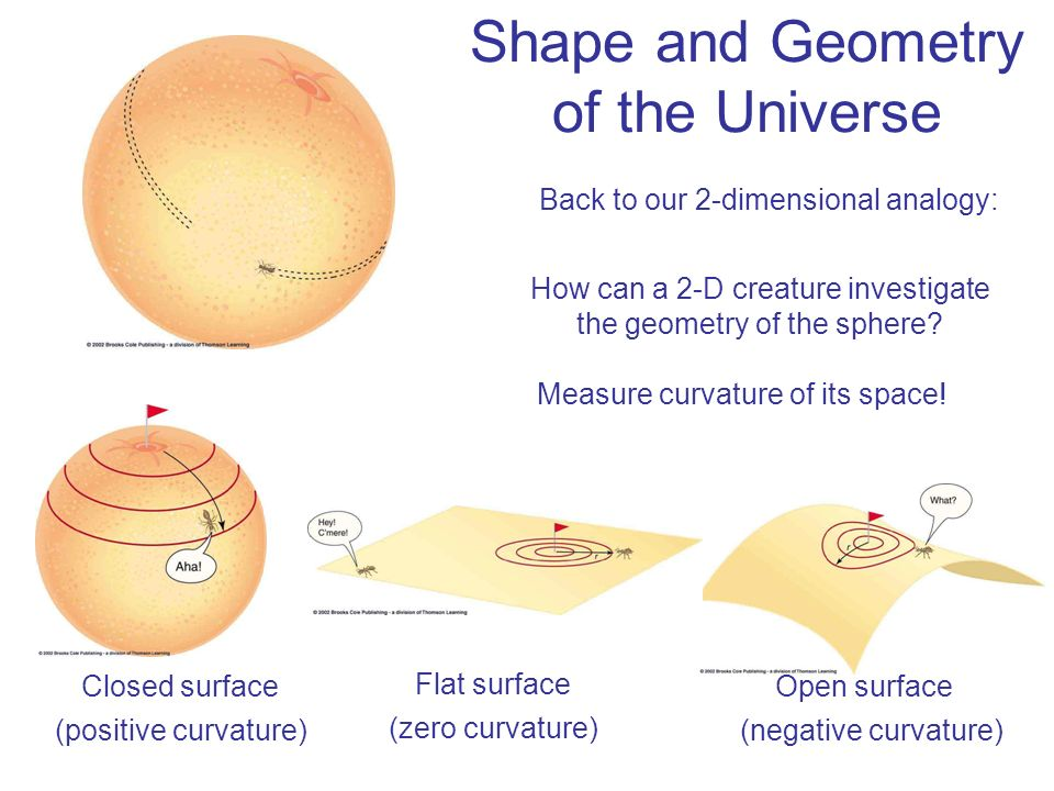Shape and Geometry of the Universe