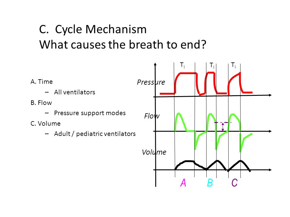 C. Cycle Mechanism What causes the breath to end
