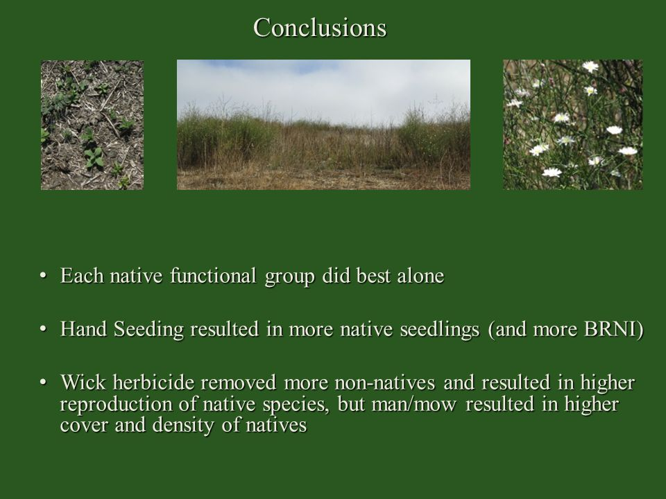 Conclusions Each native functional group did best alone