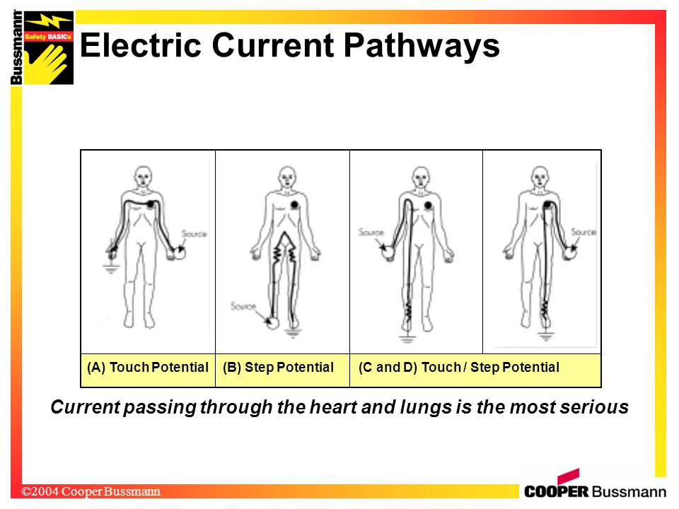 Electric Current Pathways