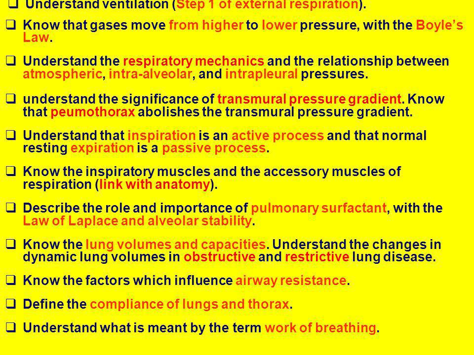 Understand ventilation (Step 1 of external respiration).