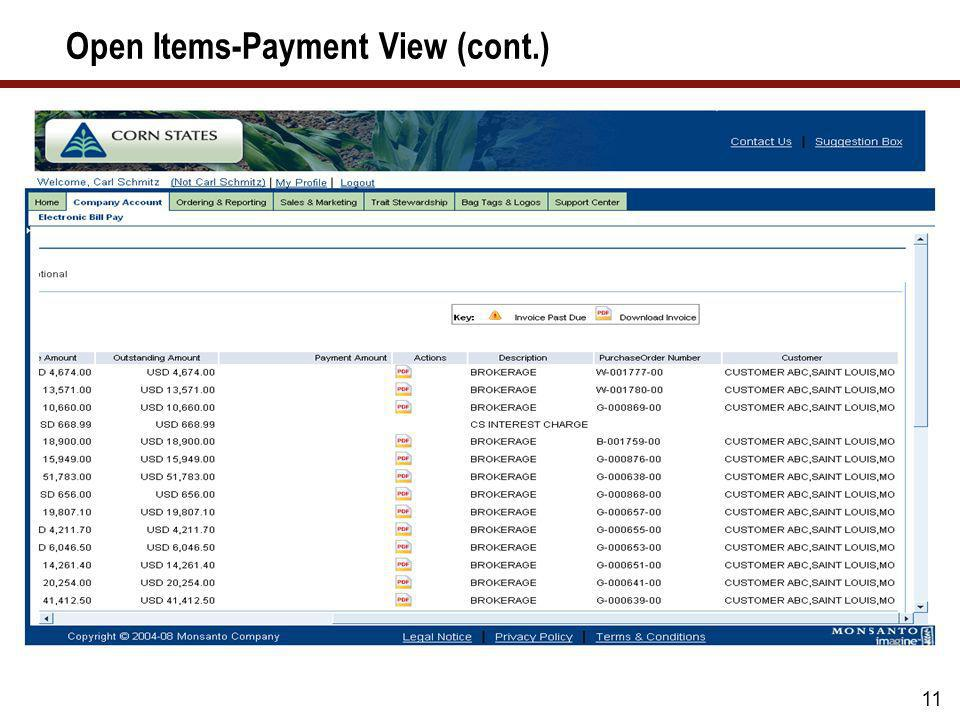 Open Items-Payment View (cont.)