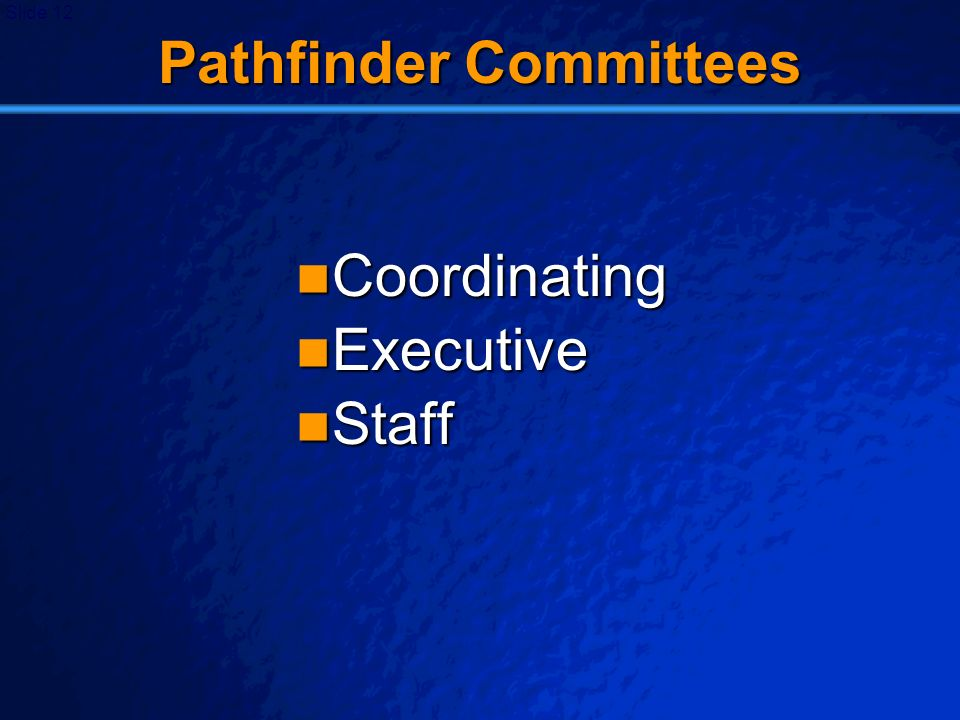 Pathfinder Committees