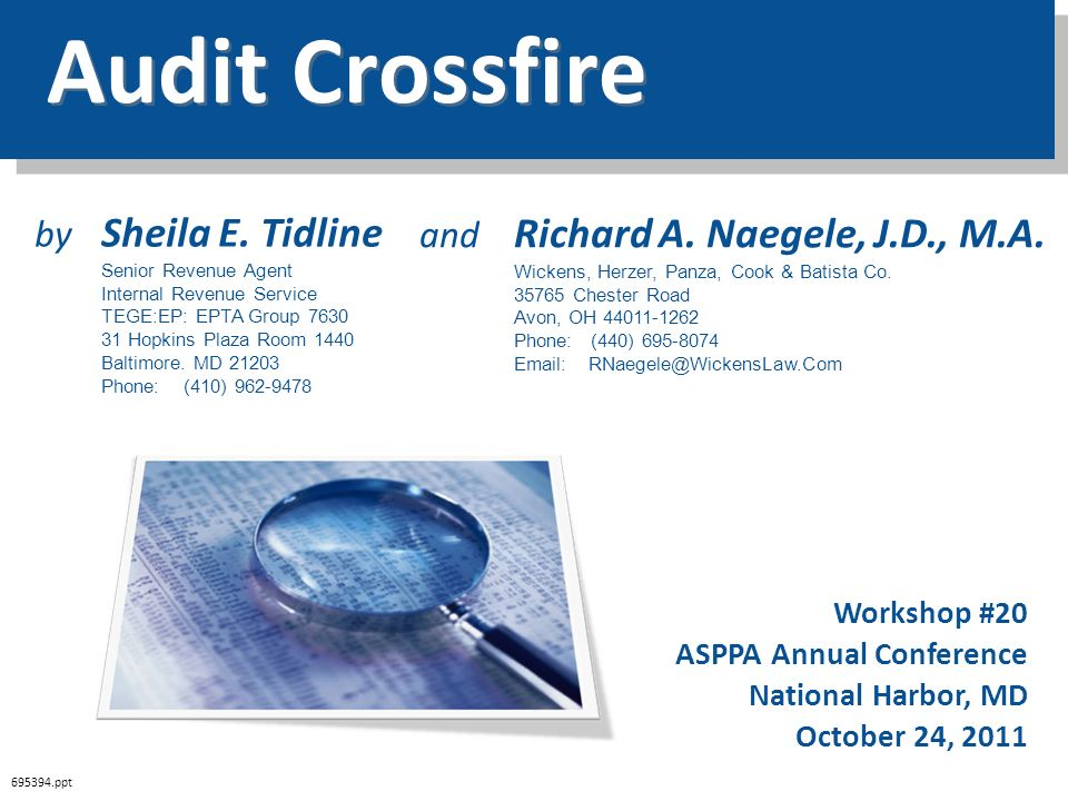 Audit Crossfire by Sheila E. Tidline