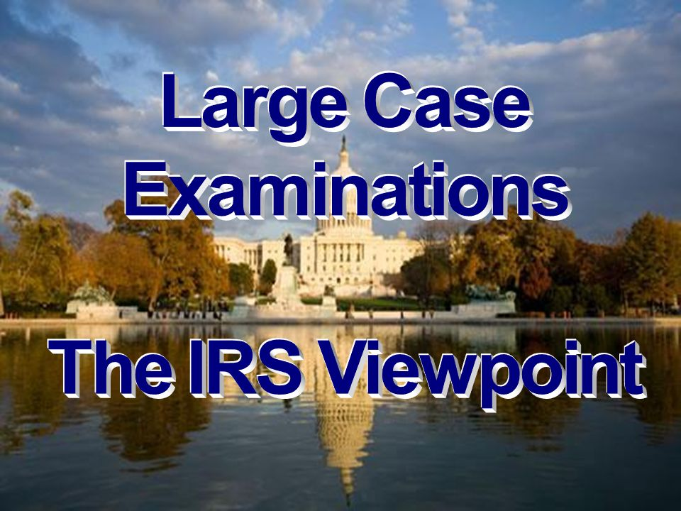 Large Case Examinations The IRS Viewpoint