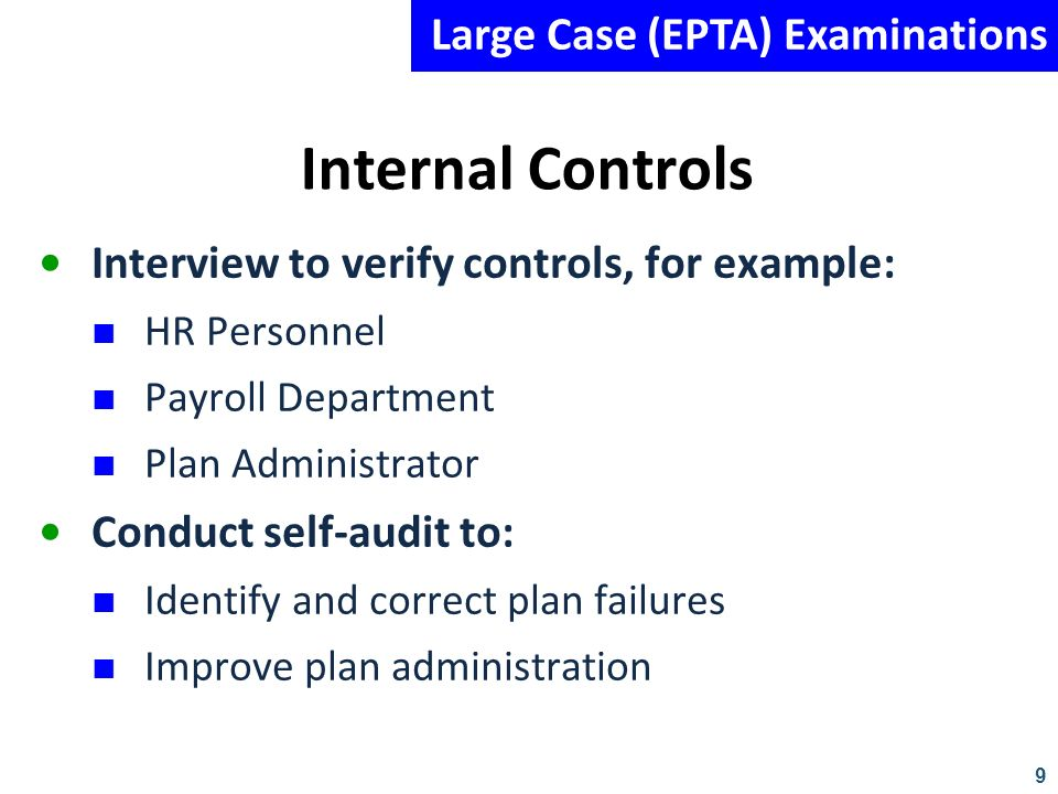 Internal Controls Large Case (EPTA) Examinations