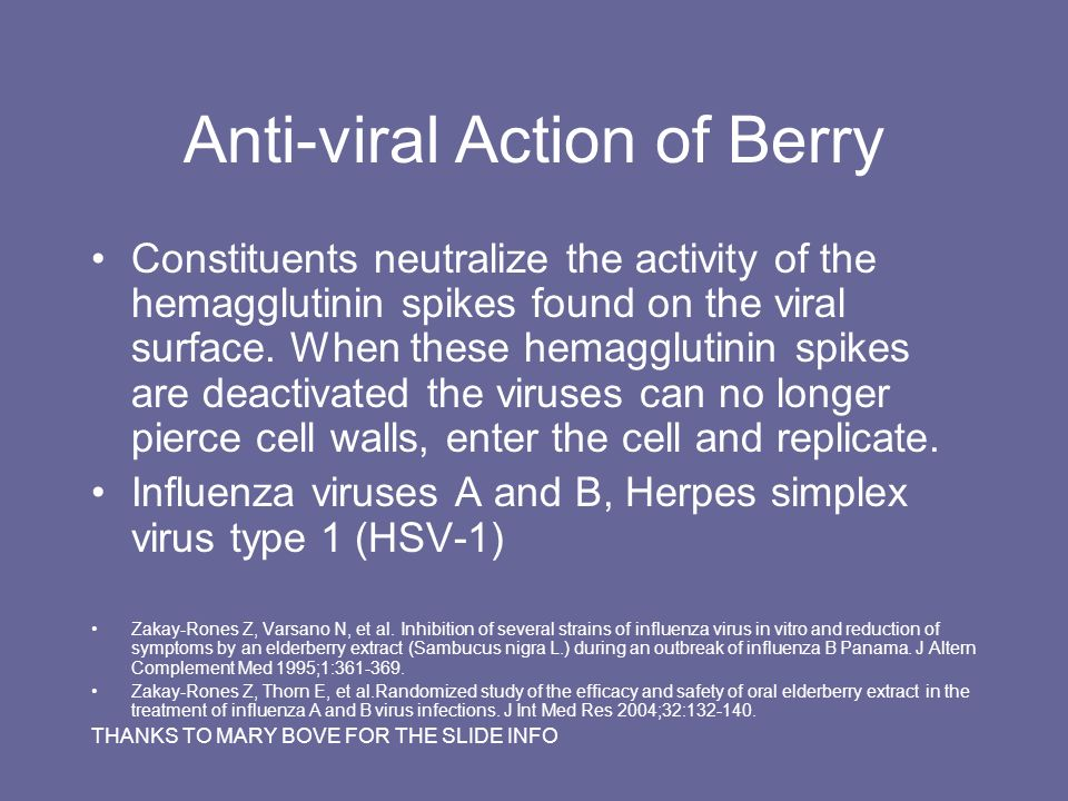 Anti-viral Action of Berry