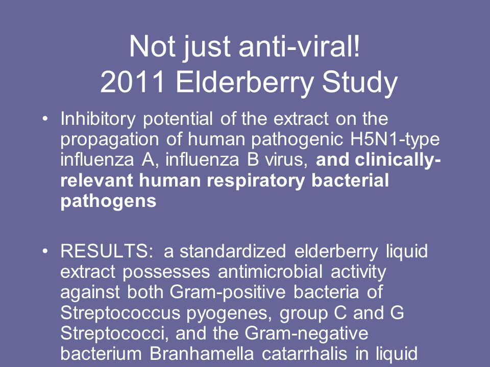 Not just anti-viral! 2011 Elderberry Study