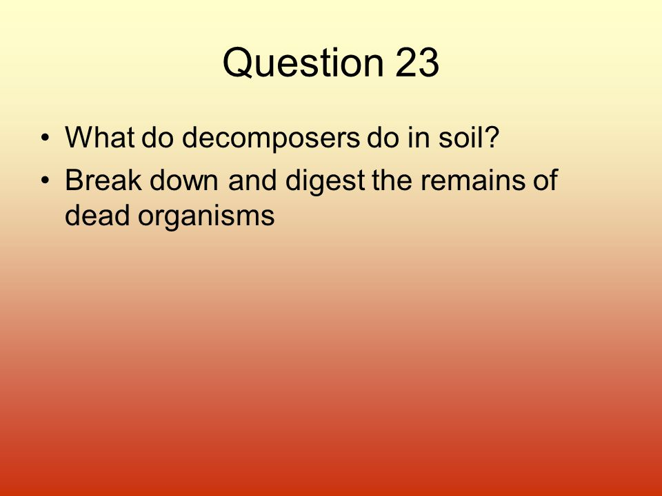 Question 23 What do decomposers do in soil