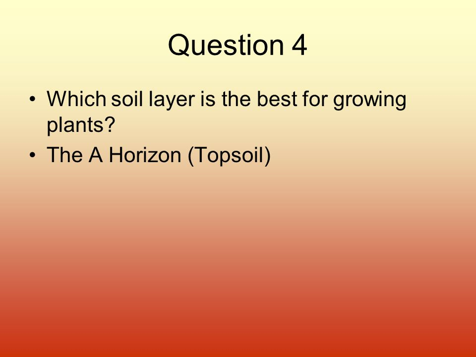 Question 4 Which soil layer is the best for growing plants