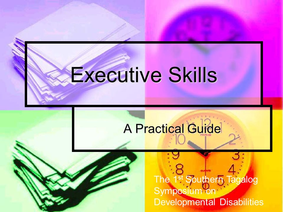 Executive Skills A Practical Guide