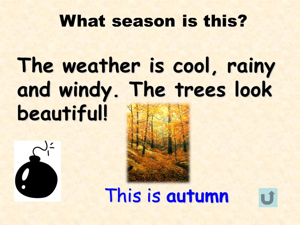 The weather is cool, rainy and windy. The trees look beautiful!