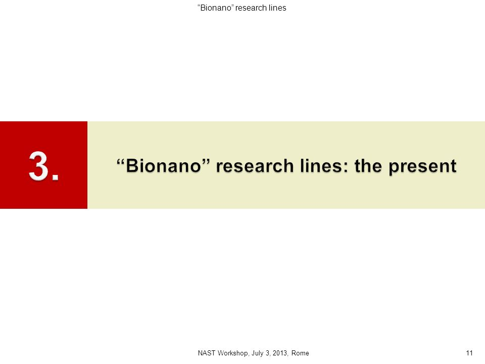 Bionano research lines: the present