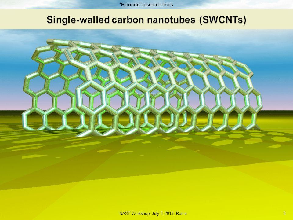 Single-walled carbon nanotubes (SWCNTs)