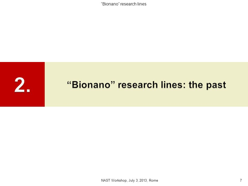 Bionano research lines: the past