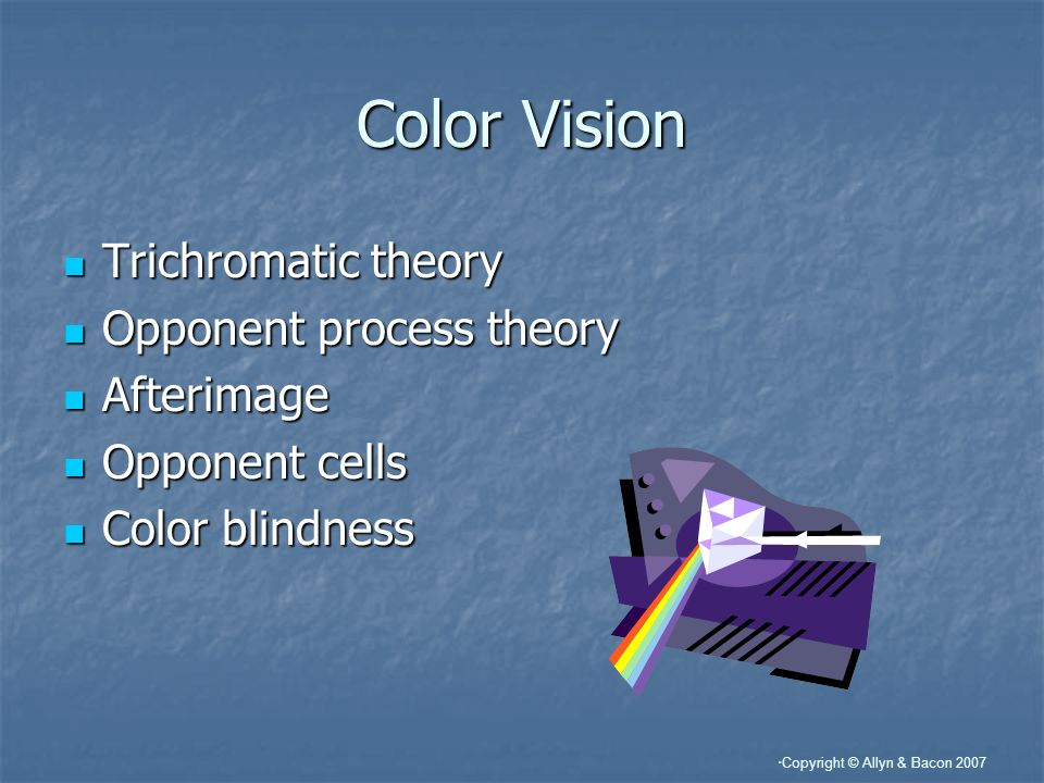 Color Vision Trichromatic theory Opponent process theory Afterimage