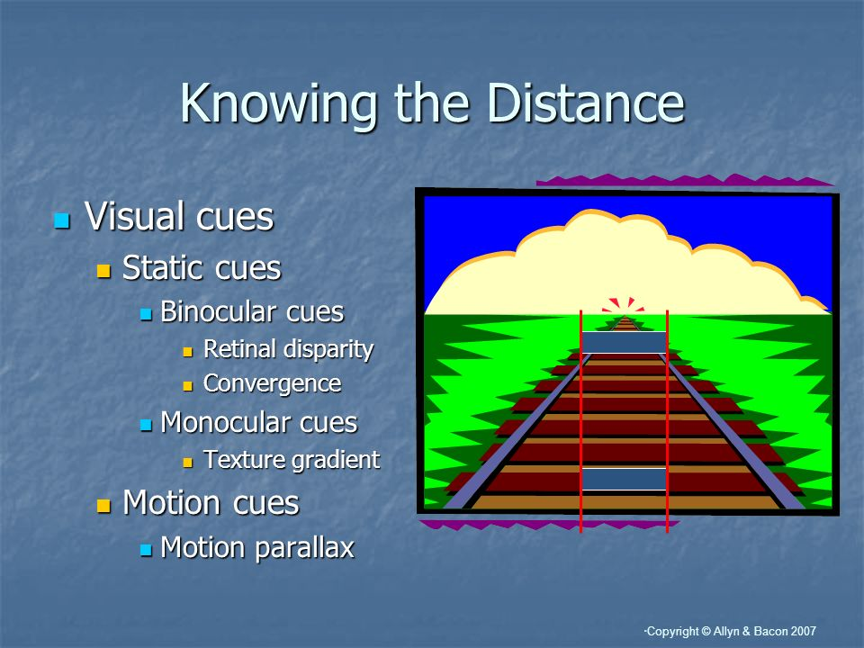 Knowing the Distance Visual cues Static cues Motion cues