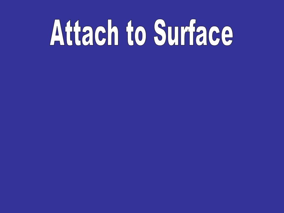 Attach to Surface