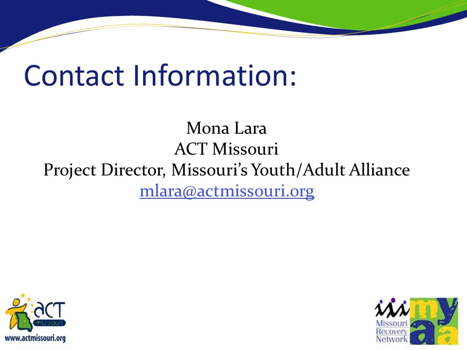 Project Director, Missouri's Youth/Adult Alliance