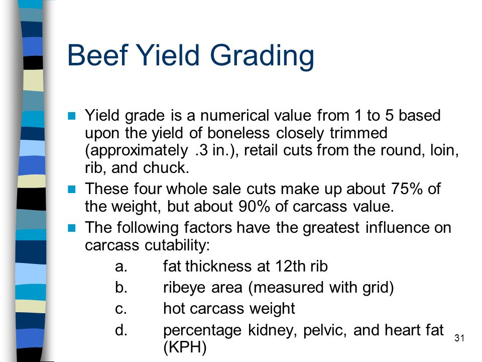 Beef Yield Grading