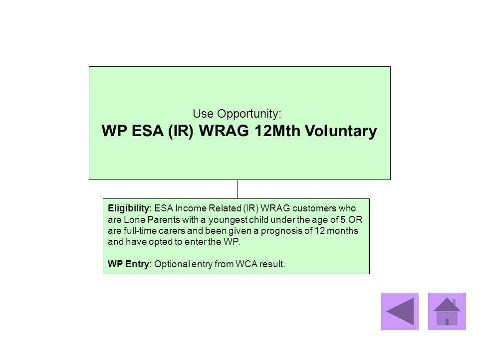 WP ESA (IR) WRAG 12Mth Voluntary