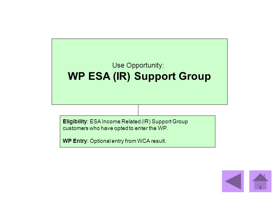 WP ESA (IR) Support Group