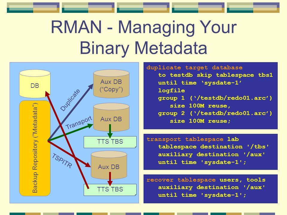 RMAN - Managing Your Binary Metadata